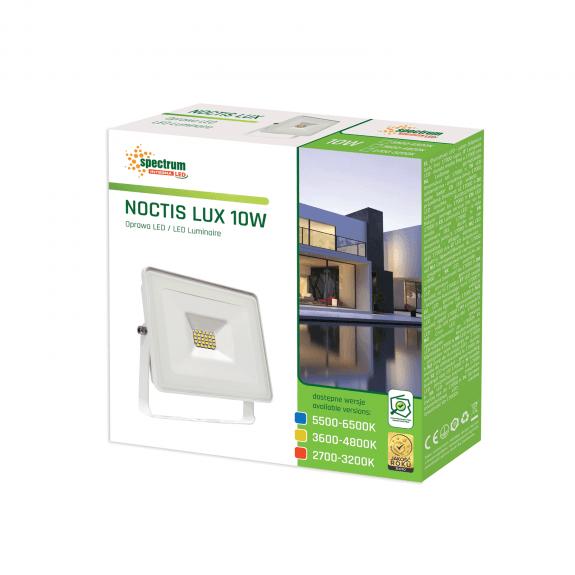 LED Fluter / Scheinwerfer NOCTIS Lux in Weiß 10 Watt - Lichtfarbe wählbar