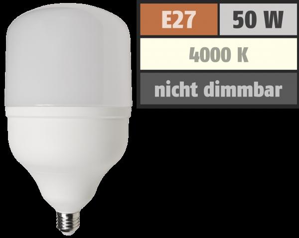 LED Lampe McShine BIG50 E27, 50W, 4600lm, 138x254mm, neutralweiß