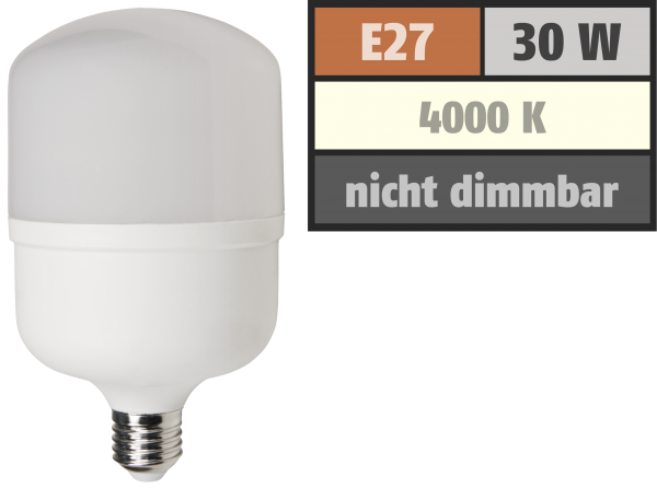 LED Lampe McShine BIG30 E27, 30W, 2800lm, 100x191mm, neutralweiß
