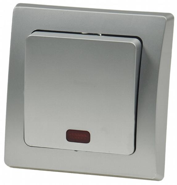 DELPHI Kontroll-Schalter mit Lämpchen Silber