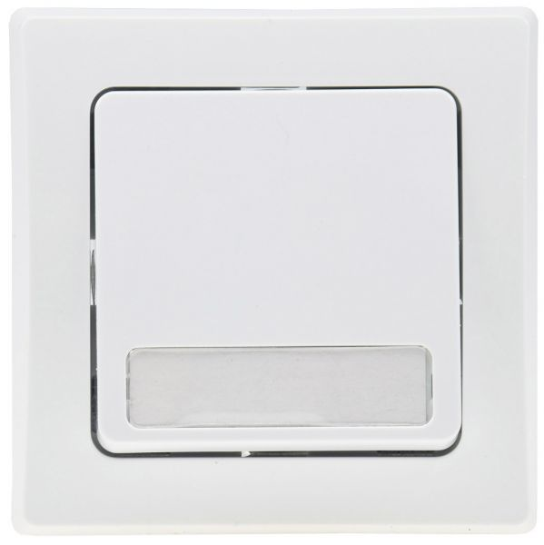 DELPHI Taster mit Namensschild 0-250V~/ 10A, inkl. Rahmen, UP, weiß